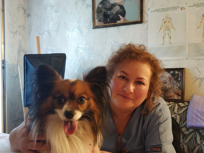 Остеопатия для животных в СПб
